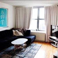 1 Bedroom Apartment in East Village